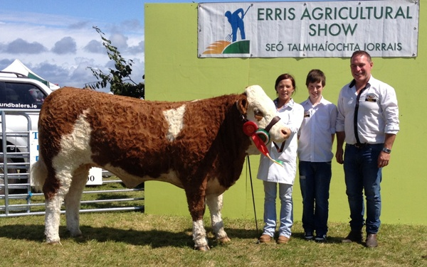 Erris Show Reserve Champion 'Corbally Eires VIP'