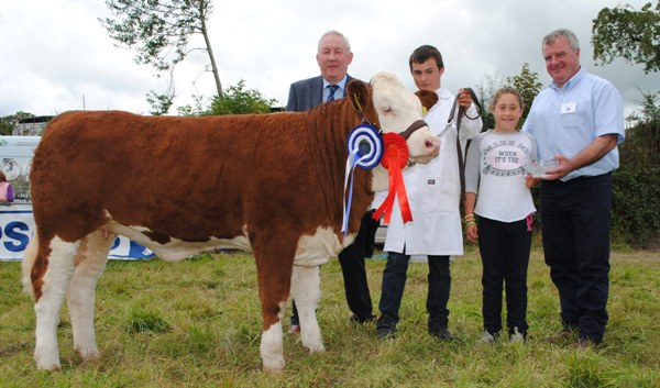 Virginia Club Jan Heifer Calf Champion 'Ceannaboe Freda'
