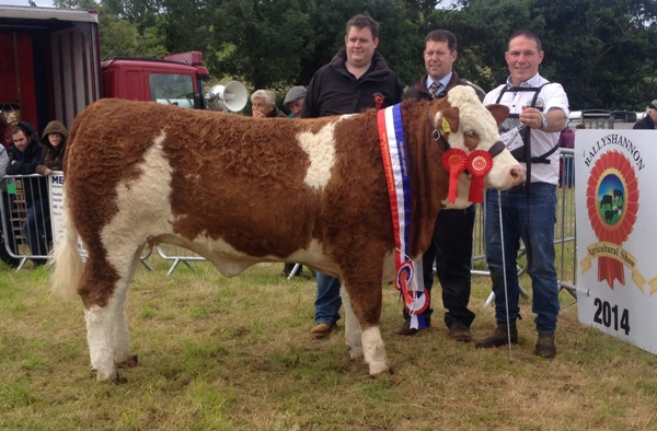 Ballyshannon Champion 'Corbally Eires VIP'