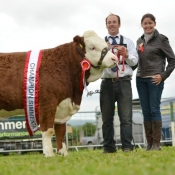 Cappamore Champion 'Raceview Evita Winty'