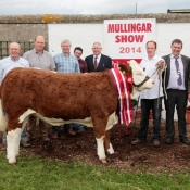 Mullingar Show Interbreed Champion 'Raceview Evita Winty'