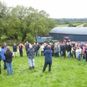 Teagasc Openday on the farm of Joe Brady 'Drumnagar Simmentals' 9.