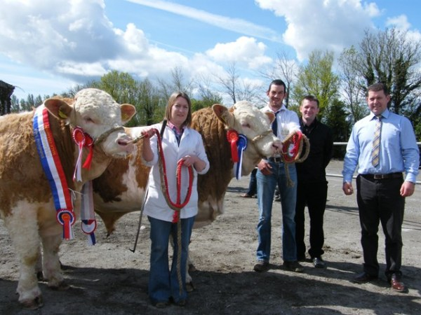 Male Champion 'Jennalyn Casino ET' & Res Champ 'Clonagh Cracker Rex'