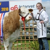 clonguish_wren_nat_senior_heifer