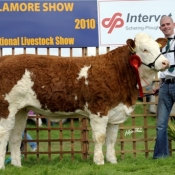 corbally_a1_katie_yearling_heifer
