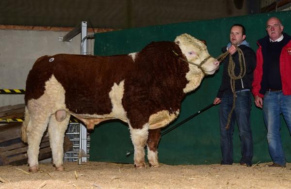 Tullamore 081217 Bearna-Dhearg Homer €3000