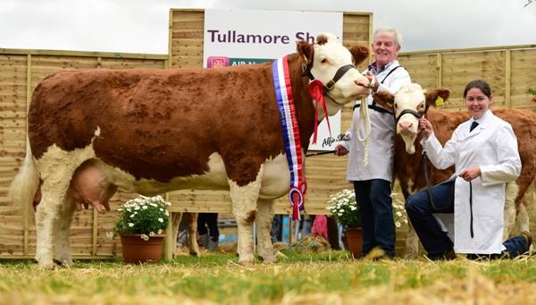 National Senior Cow Champion 'Seepa Aster'