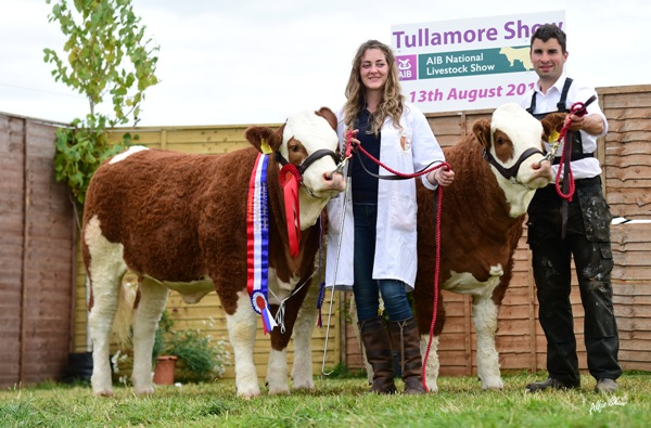 Tullamore Show 2017 National Simmental Junior Progeny Pair 'Rathnashan Simmentals'