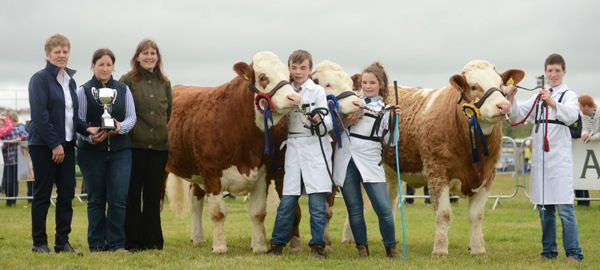 Tullamore 2015 Junior FBD Insurance Young Handler Line-Up