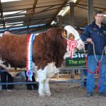 Roscommon Sale Results May 11th 2018