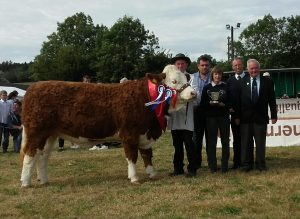 Ballygarvan-Overall-Interbreed-Champ-Raceview-Faustina-Wynty.jpg