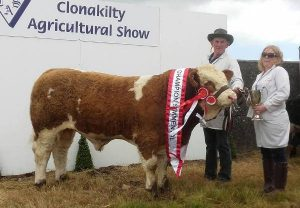 Clonakilty-2017-Interbreed-Beef-Calf-Overall-Simm-Champ-1st-Bull-Calf-Class-Raceview-Hermon.jpg