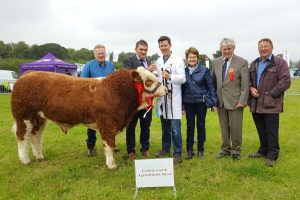 CoLouth-2017-Overall-Calf-Champ-Sim-Champion-Overall-Interbreed-Show-Champ-Dermotstown-High-King.jpg