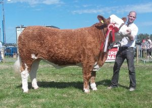 Cork-2017-Champ-Sim-3rd-Beef-Interbreed-Champ-Corbally-Goddess-Vintage-Katie.jpg