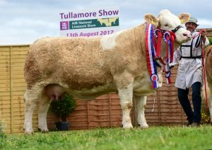 Tullamore-Show-2017-Overall-Sim-Champ-Clonagh-Darling-Eyes-ET.jpg