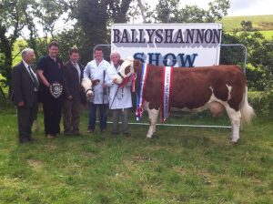 ballyshannon13_overall__interbreed_champ_seepa_aster.jpg