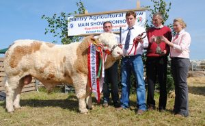 bantry-show-overall-champ-castlegale-eric.jpg