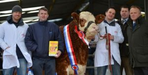 champion-heifer-presentation.jpg