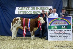 national-weanling-champ-overall-sim-champ-ian-connelly-glinsk-castlerea.jpg