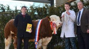 tullamore_show_sale_male_champion_2014.jpg