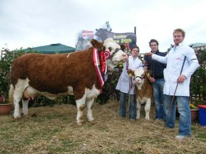 Athlone 2011 Champion 'Fearna Tiffany'