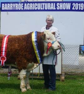 Barryroe19 Overall Champ Sth Simm Club Yearling Bull Calf Champ Dripsey King of Hearts