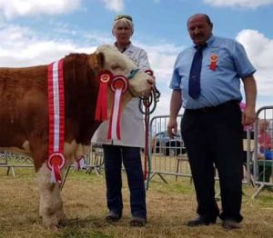 Charleville19 Male Champ Dripsey King of Hearts