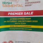 Roscommon Premier Sale Sat 24th October  Photos & Videos Available