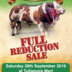 Hillcrest Simmentals Full Reduction Sale
