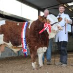 Roscommon Sale Results, May 10th, 2019