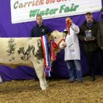 Carrick-On-Shannon Winter Fair