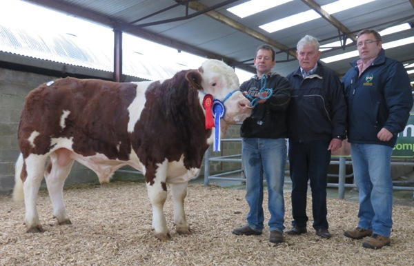 Ros May Res Champ Cruithill Frances E2400