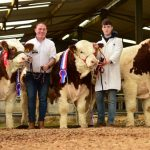 Roscommon Show & Sale Report November 2018