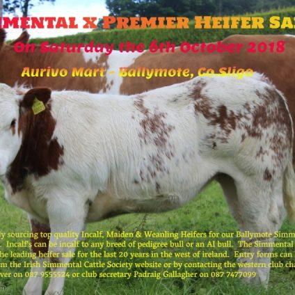 Ballymote X Heifer 061018 Poster